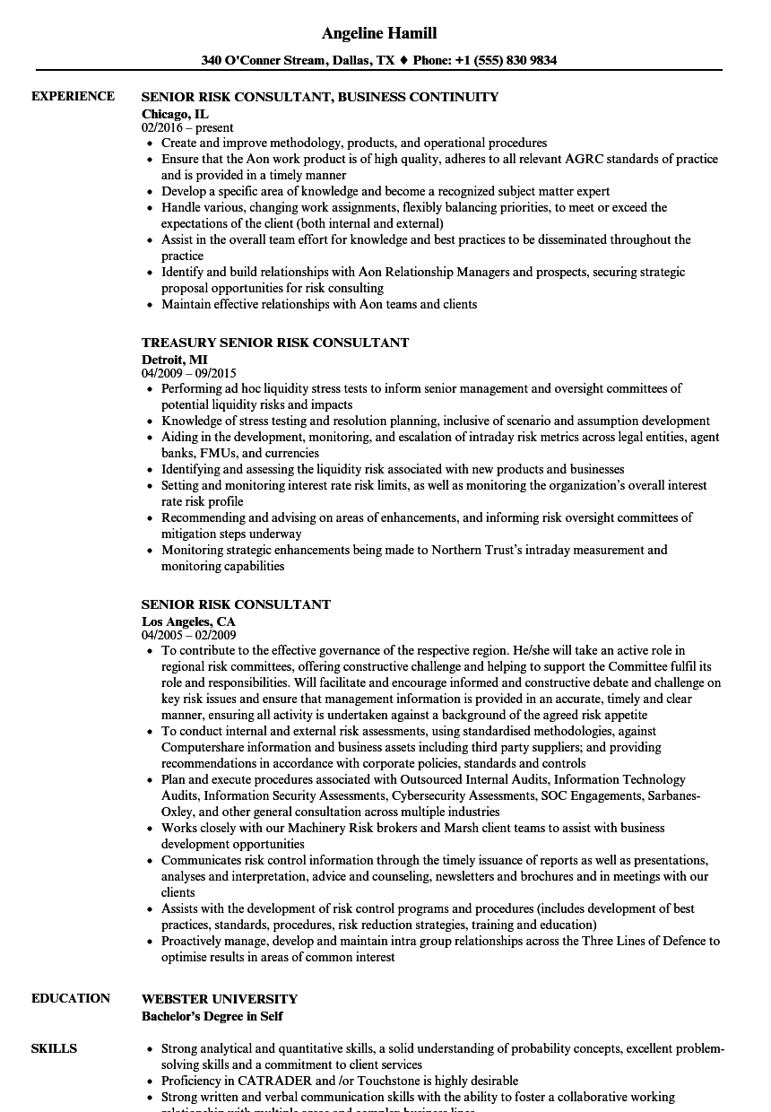 senior risk consultant resume samples