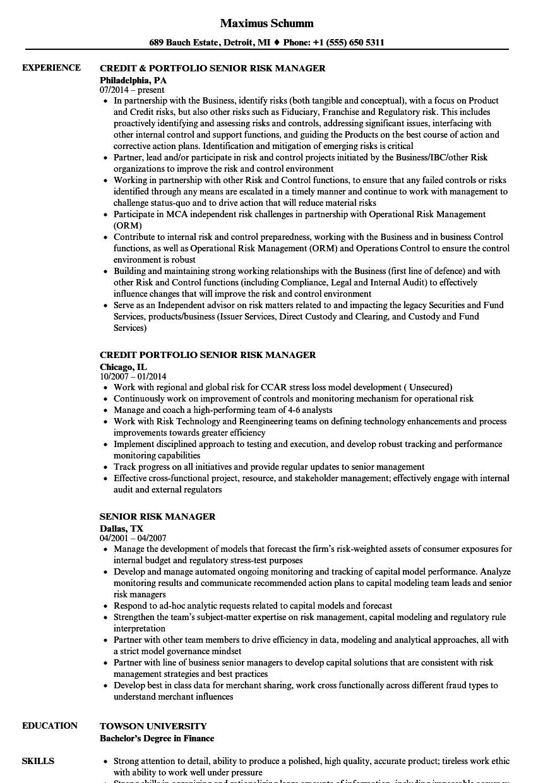Senior risk manager resume samples velvet jobs download senior risk manager resume sample as image file spiritdancerdesigns Gallery