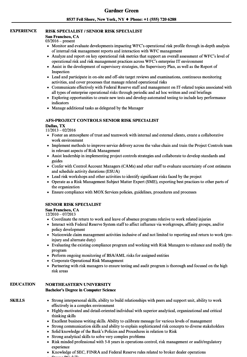 senior risk specialist resume samples