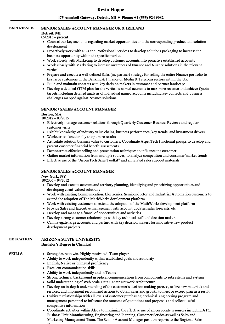 Senior Sales Account Manager Resume Samples | Velvet Jobs