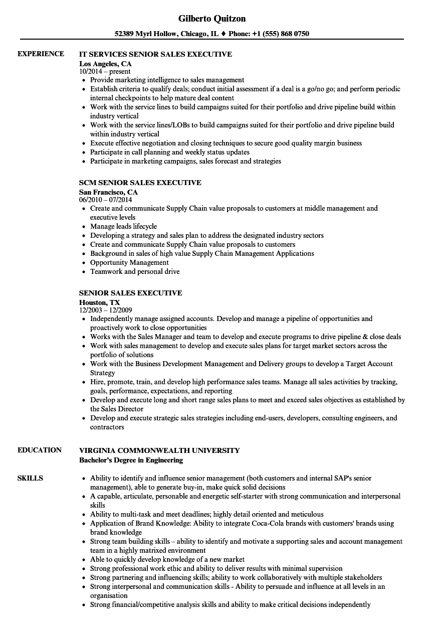 Senior Sales Executive Resume Samples | Velvet Jobs