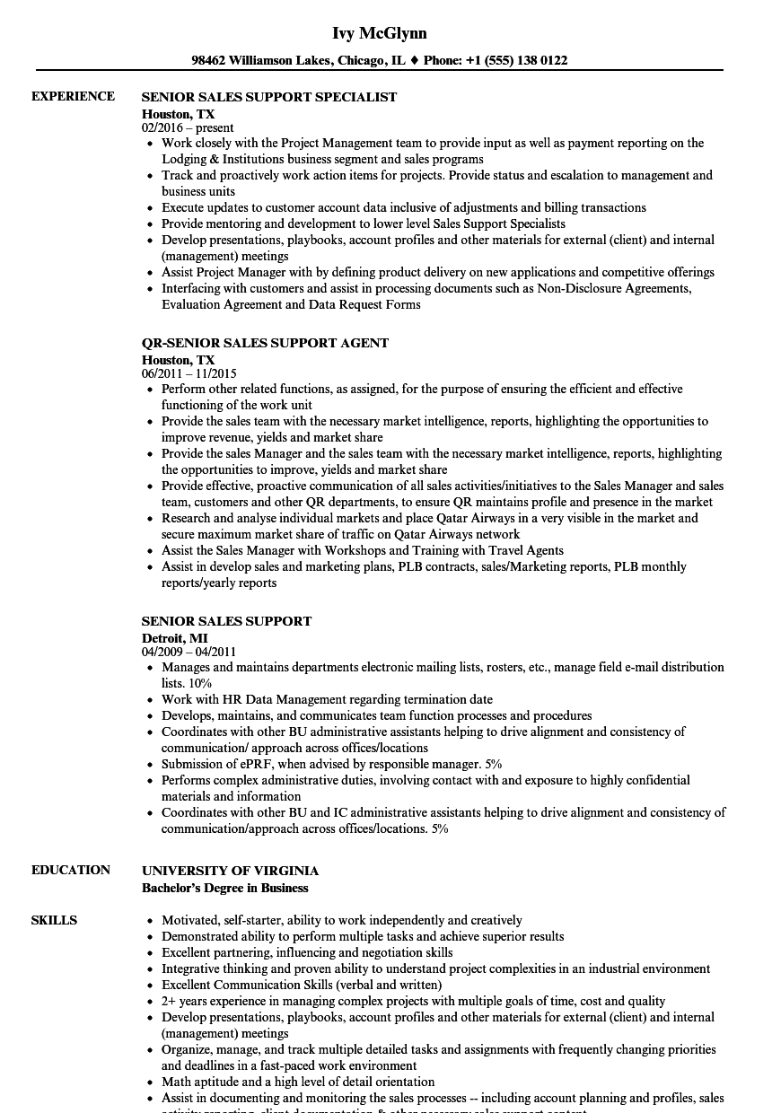 Download Senior Sales Support Resume Sample as Image file