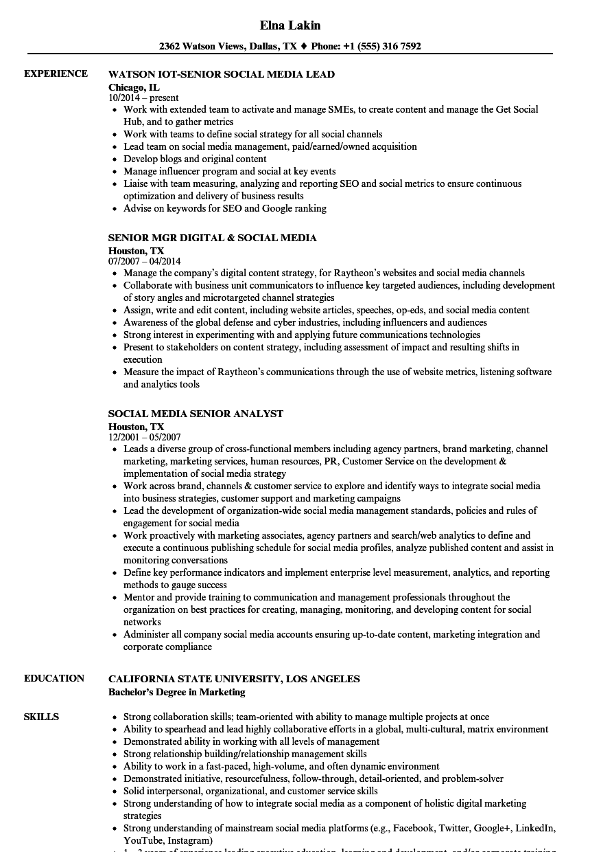 Captivating Download Senior Social Media Resume Sample As Image File