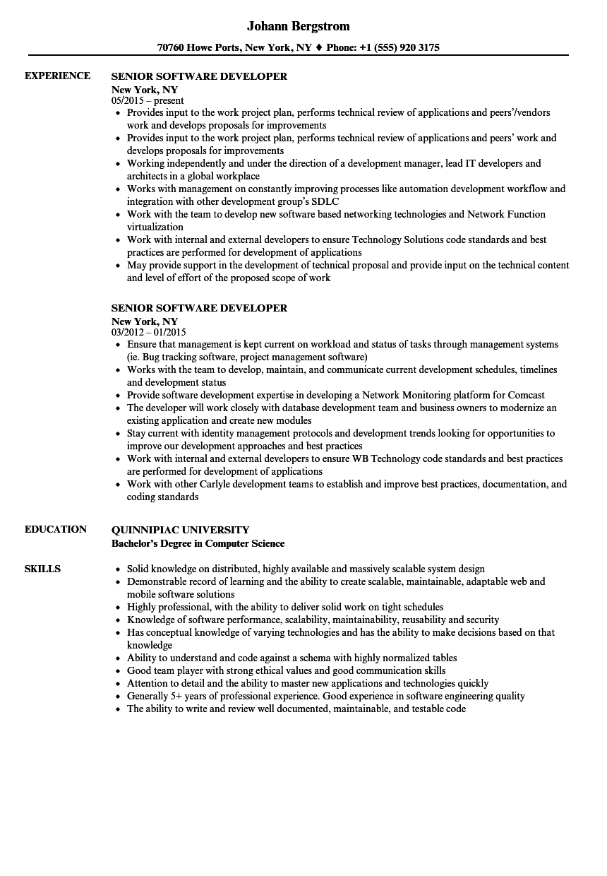 Senior Software Developer Resume Samples | Velvet Jobs