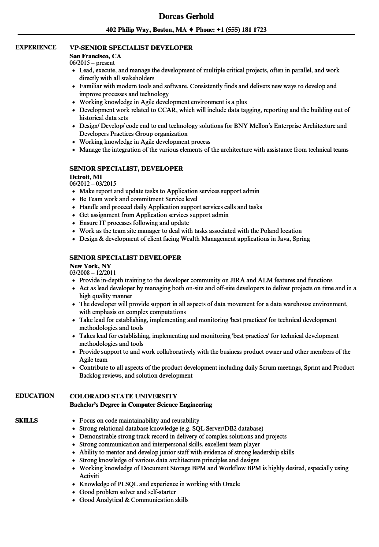 senior specialist developer resume samples
