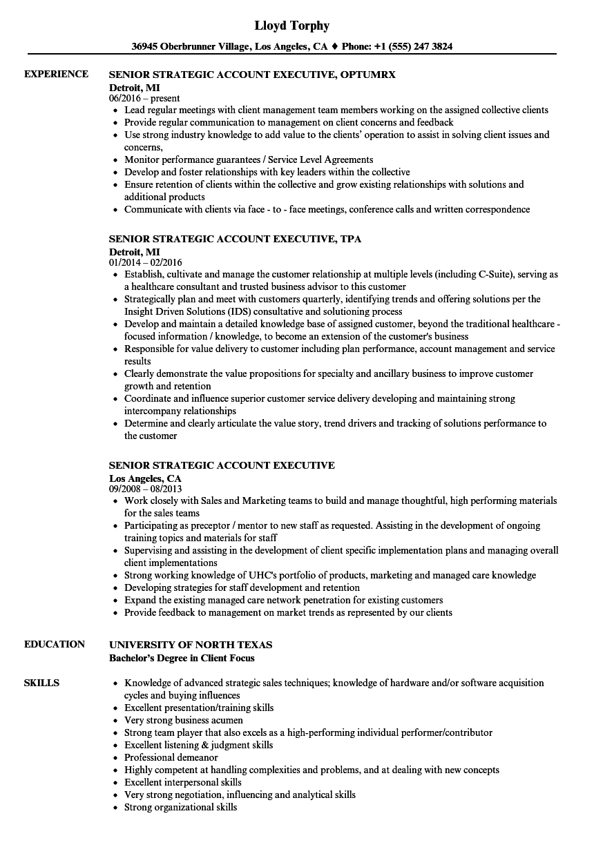 Senior Strategic Account Executive Resume Samples | Velvet Jobs