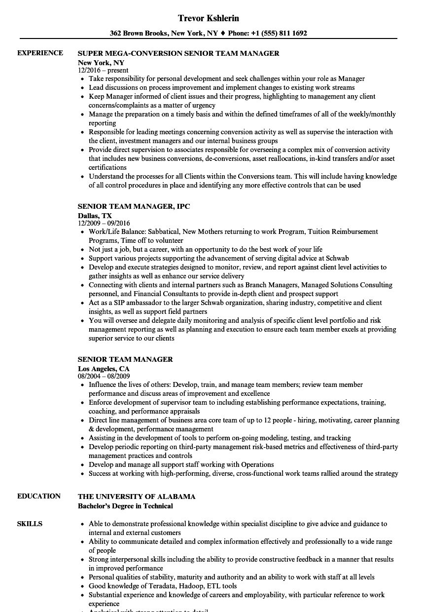 senior team manager resume samples