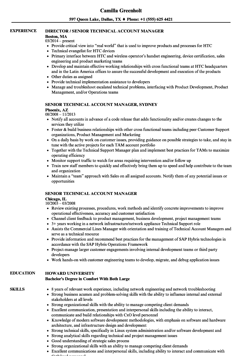 senior technical account manager resume samples