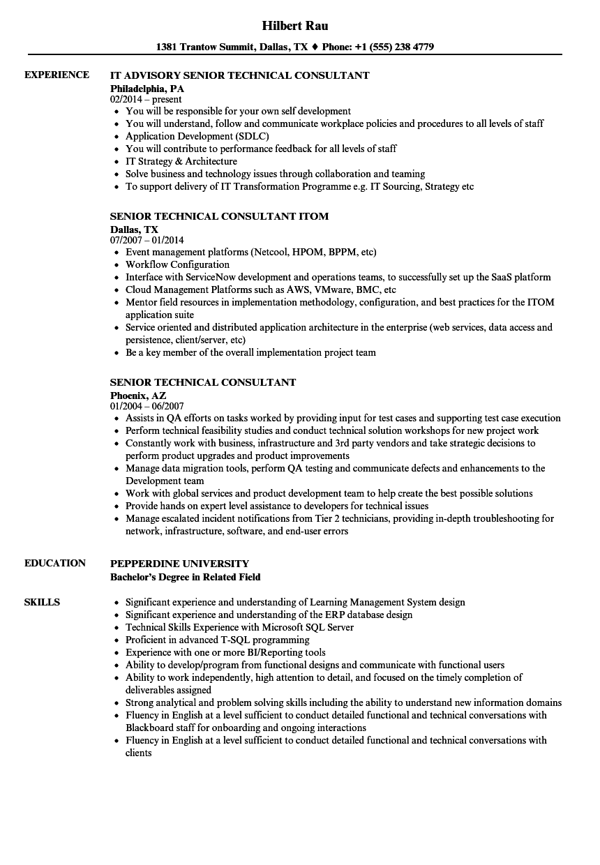 senior technical consultant resume samples