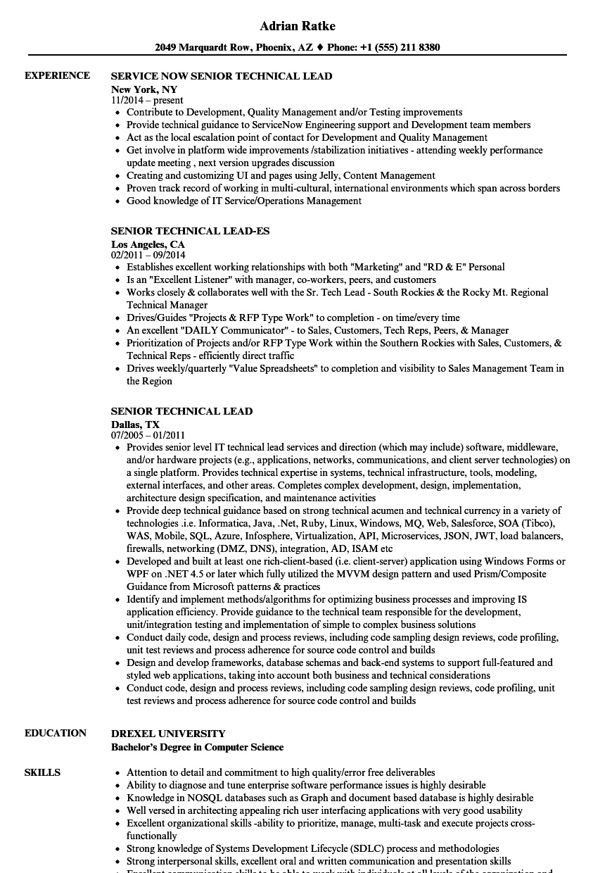 Senior Technical Lead Resume Samples | Velvet Jobs