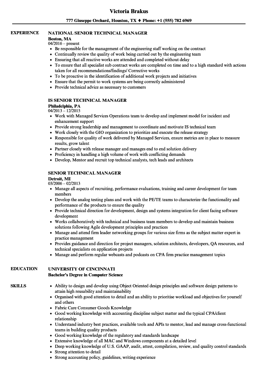 senior technical manager resume samples