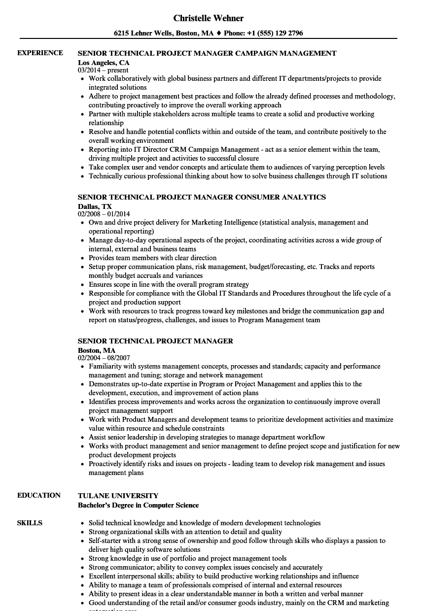 Senior Technical Project Manager Resume Samples Velvet Jobs