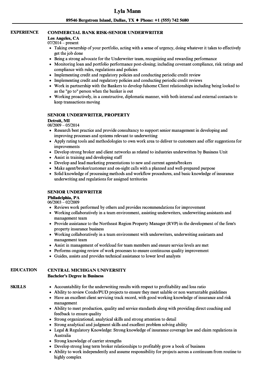 senior underwriter resume samples velvet jobs