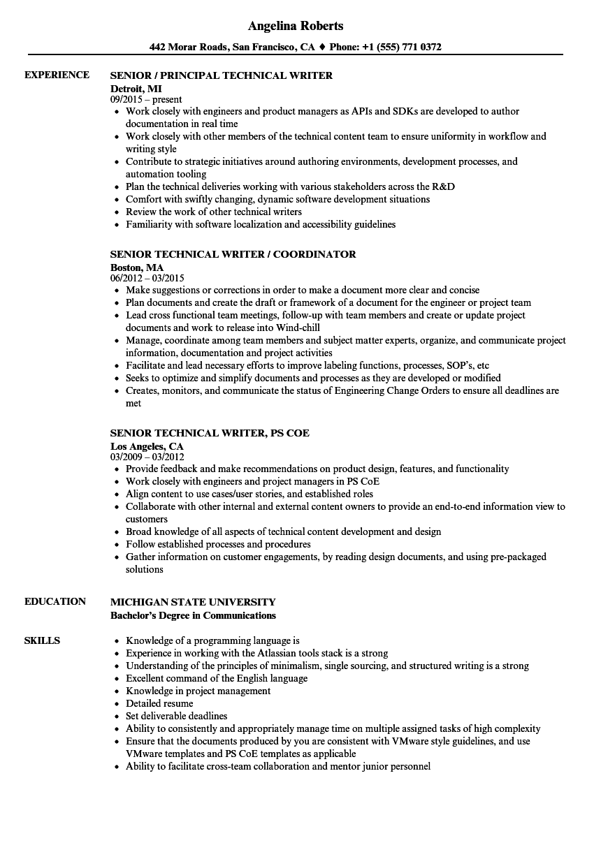 senior writer  technical resume samples
