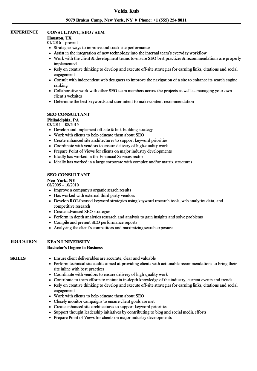 seo consultant resume samples velvet jobs