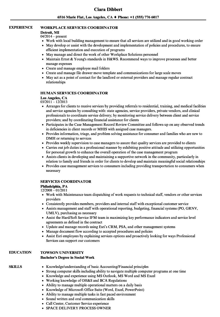 services coordinator resume samples
