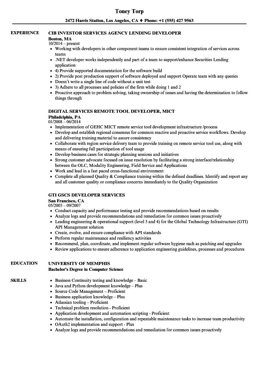 services developer resume samples