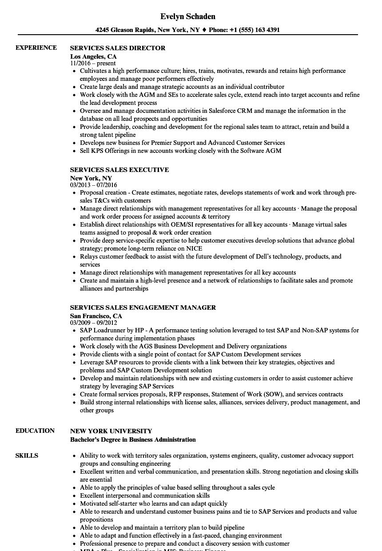 it sales resume jewelry sales representative resume osclues com