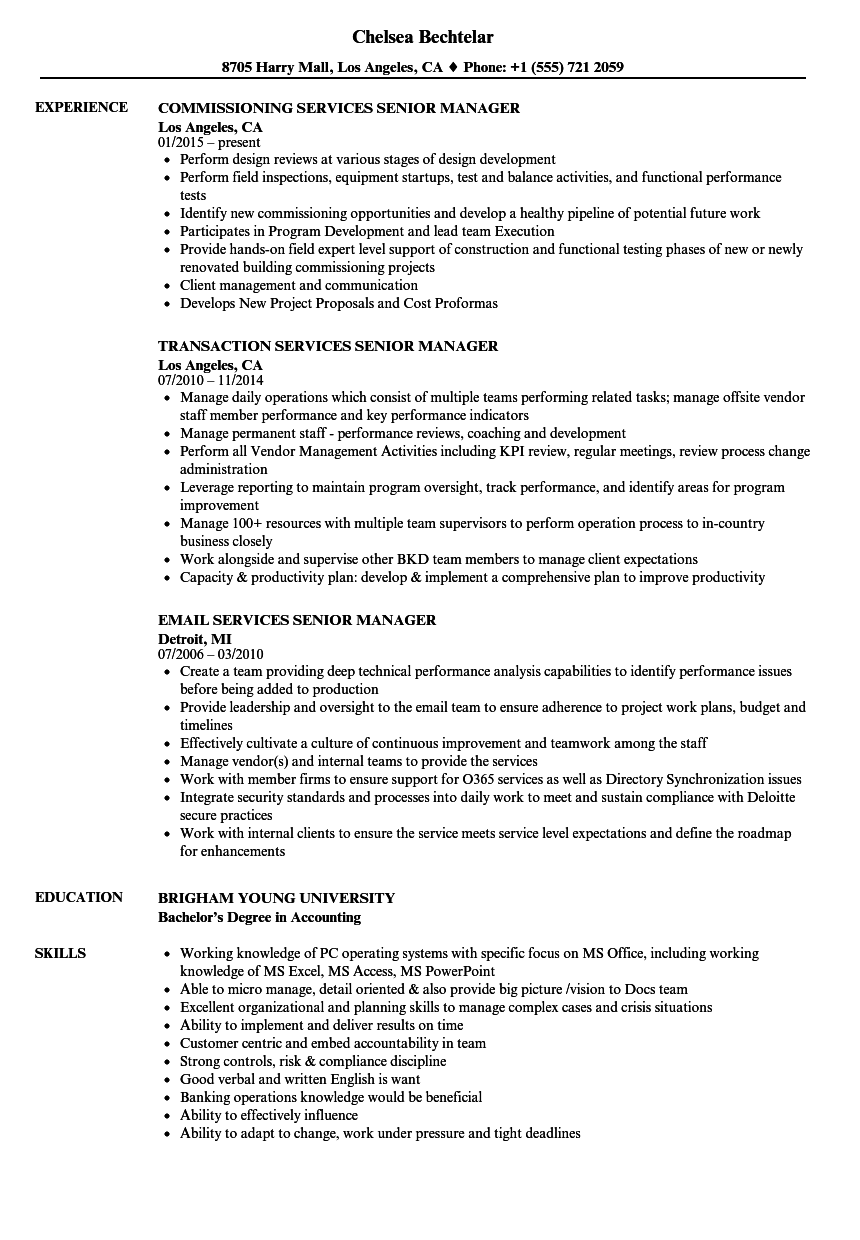 services senior manager resume samples