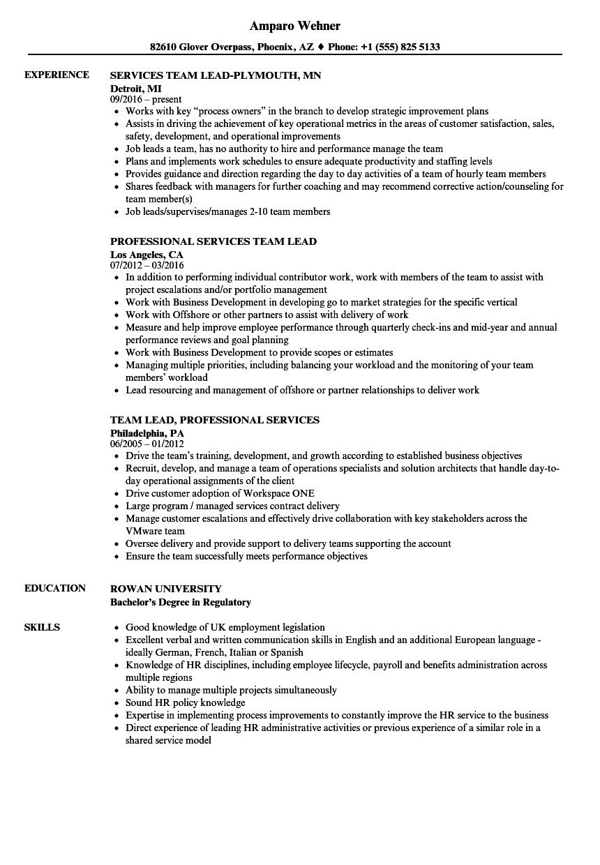 services team lead resume samples  velvet jobs