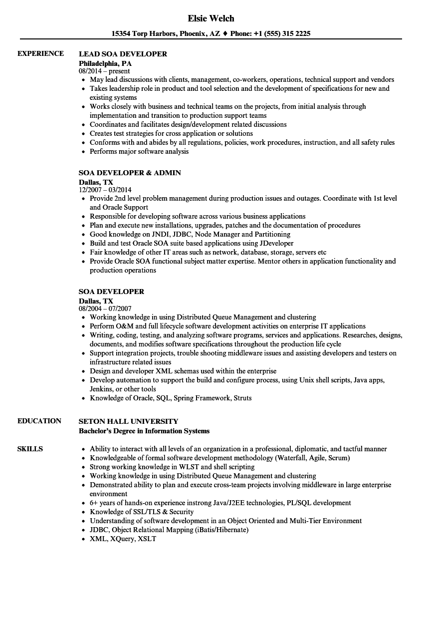 SOA Developer Resume Samples | Velvet Jobs