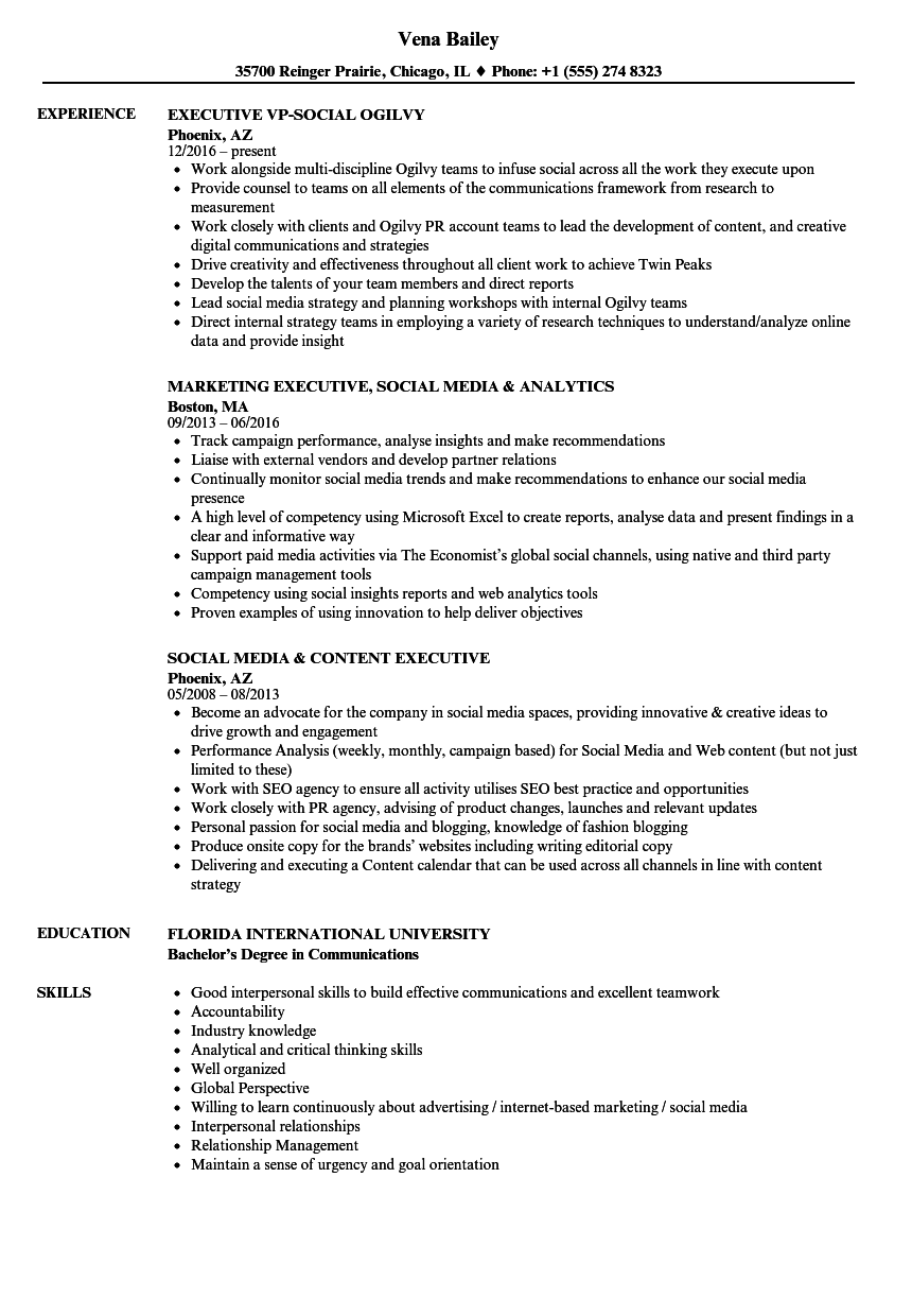 Social Executive Resume Samples Velvet Jobs