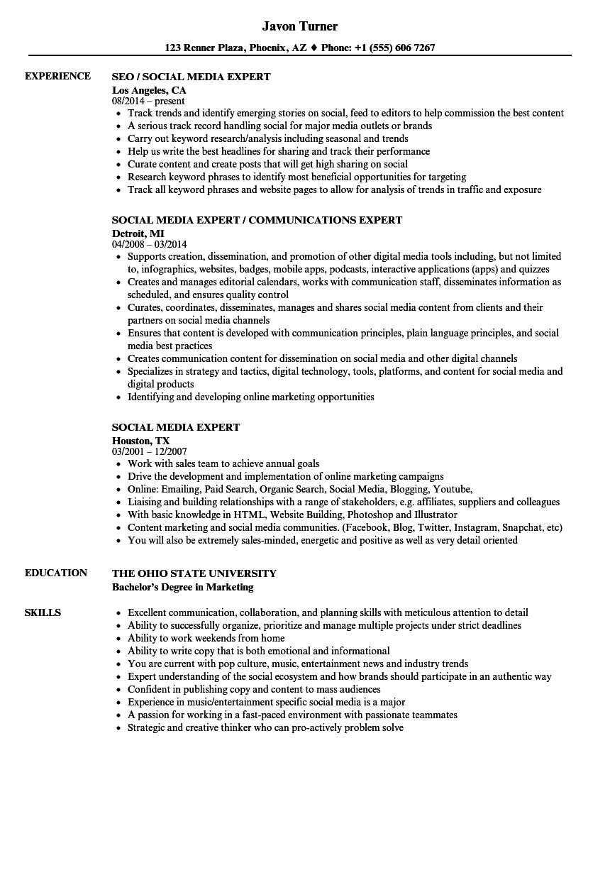 Download Social Media Expert Resume Sample As Image File
