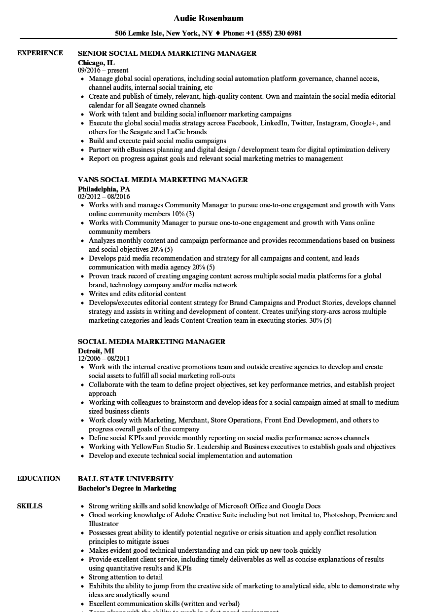 social media marketing manager resume samples