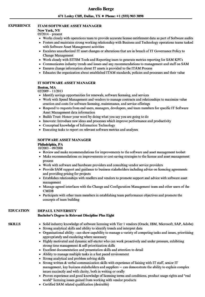 download software asset manager resume sample as image file - Asset Manager Resume Sample