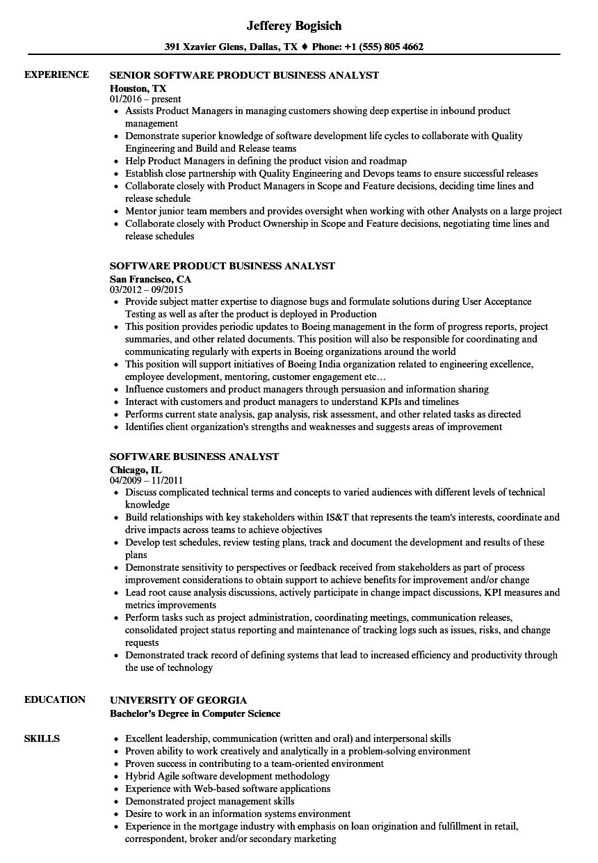 Software Business Analyst Resume Samples | Velvet Jobs