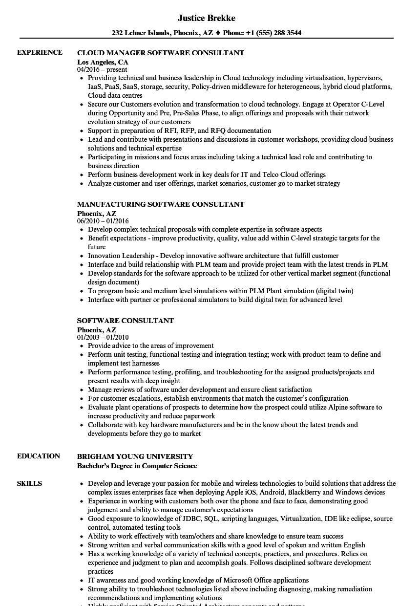 software consultant resume