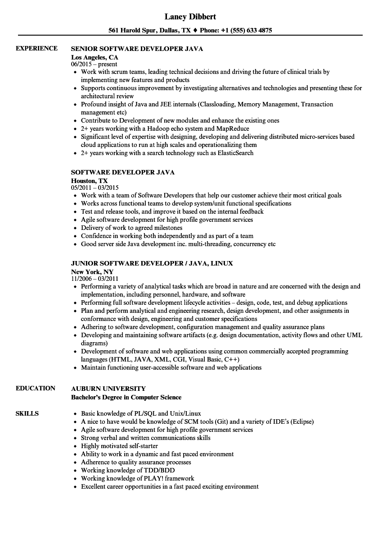 download software developer java resume sample as image file - Auburn University Resume Sample