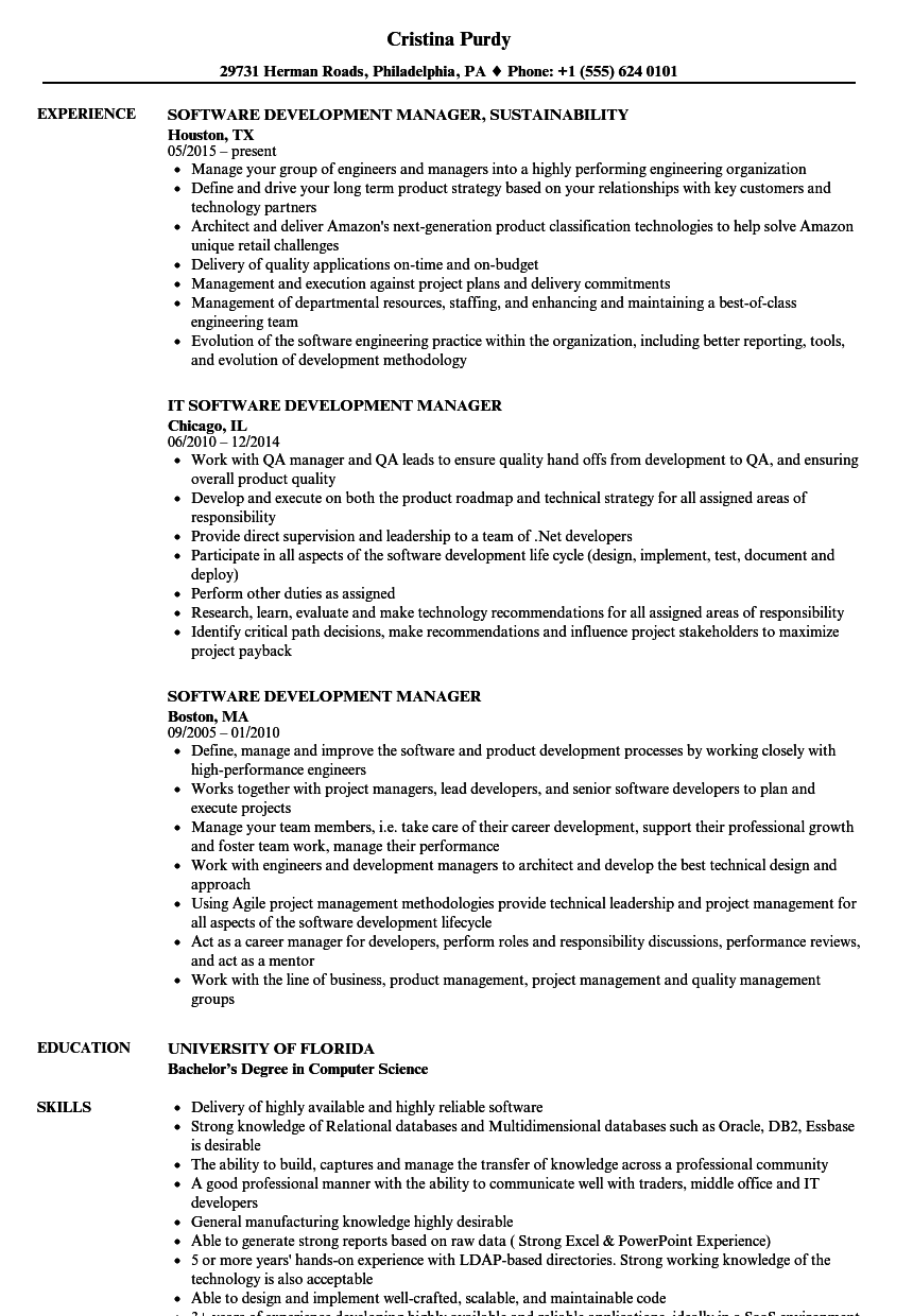 Software Development Manager Resume Samples | Velvet Jobs