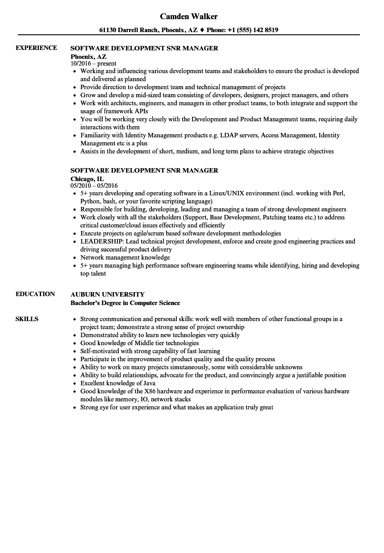 software development snr manager resume samples
