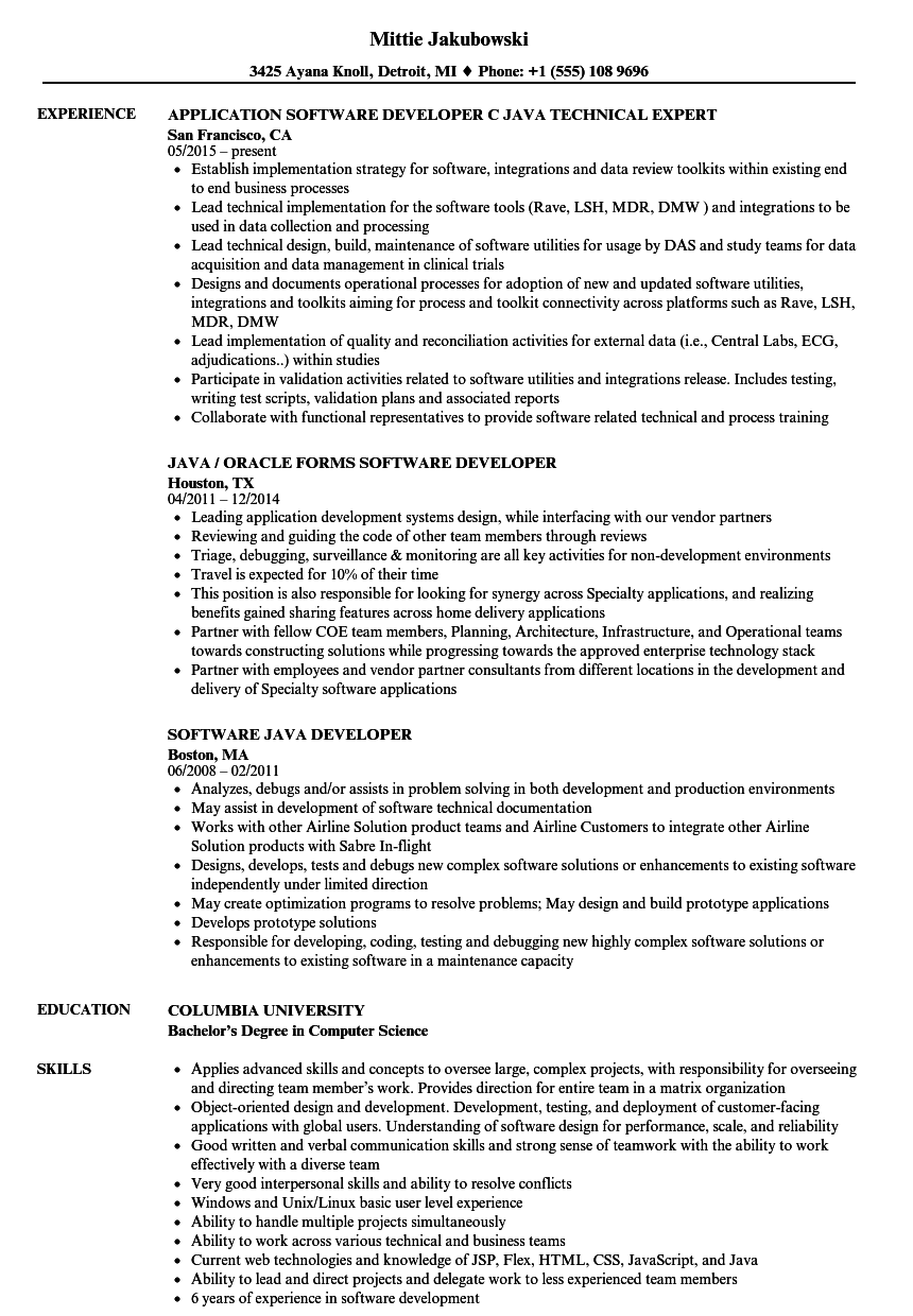 Download Software Java Developer Resume Sample As Image File  Java Developer Resume Sample