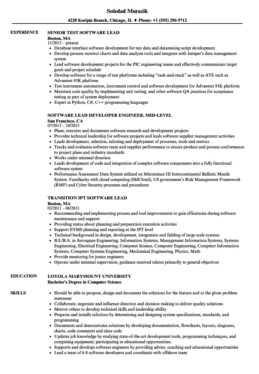 software lead resume samples