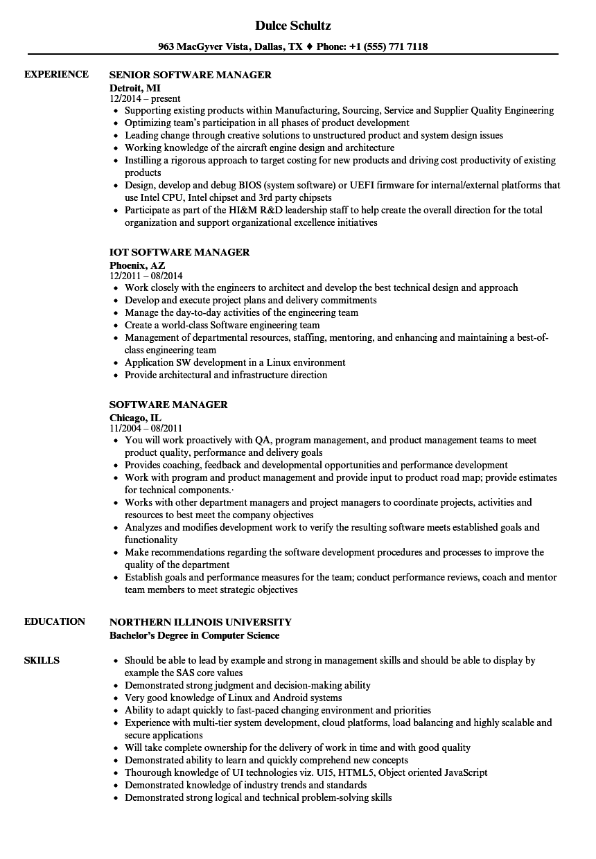 Velvet Jobs  Software Manager Resume