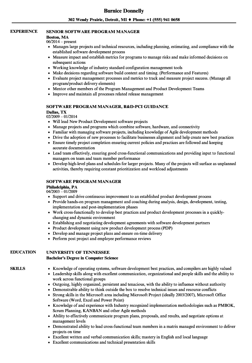 Download Software Program Manager Resume Sample As Image File  Program Manager Resume Samples