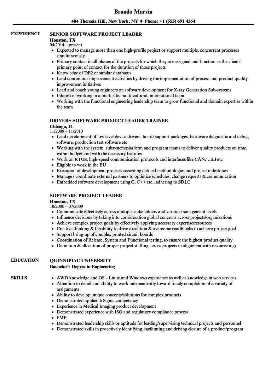 software project leader resume samples
