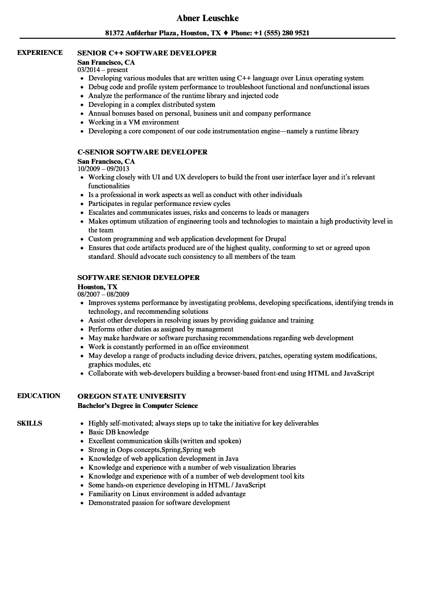 software senior developer resume samples