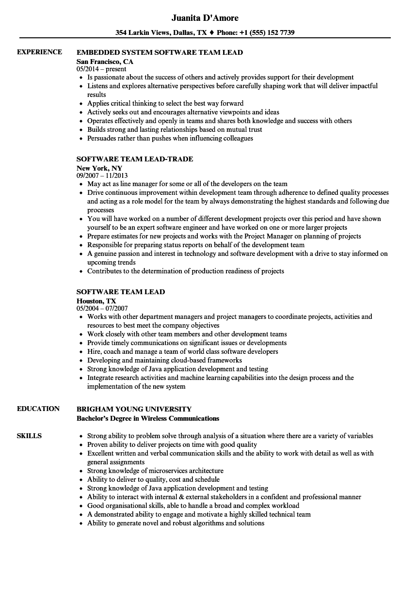 Software Team Lead Resume Samples | Velvet Jobs
