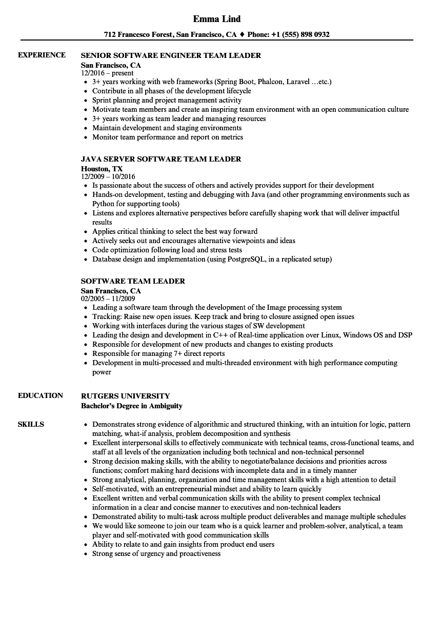 software team leader resume samples