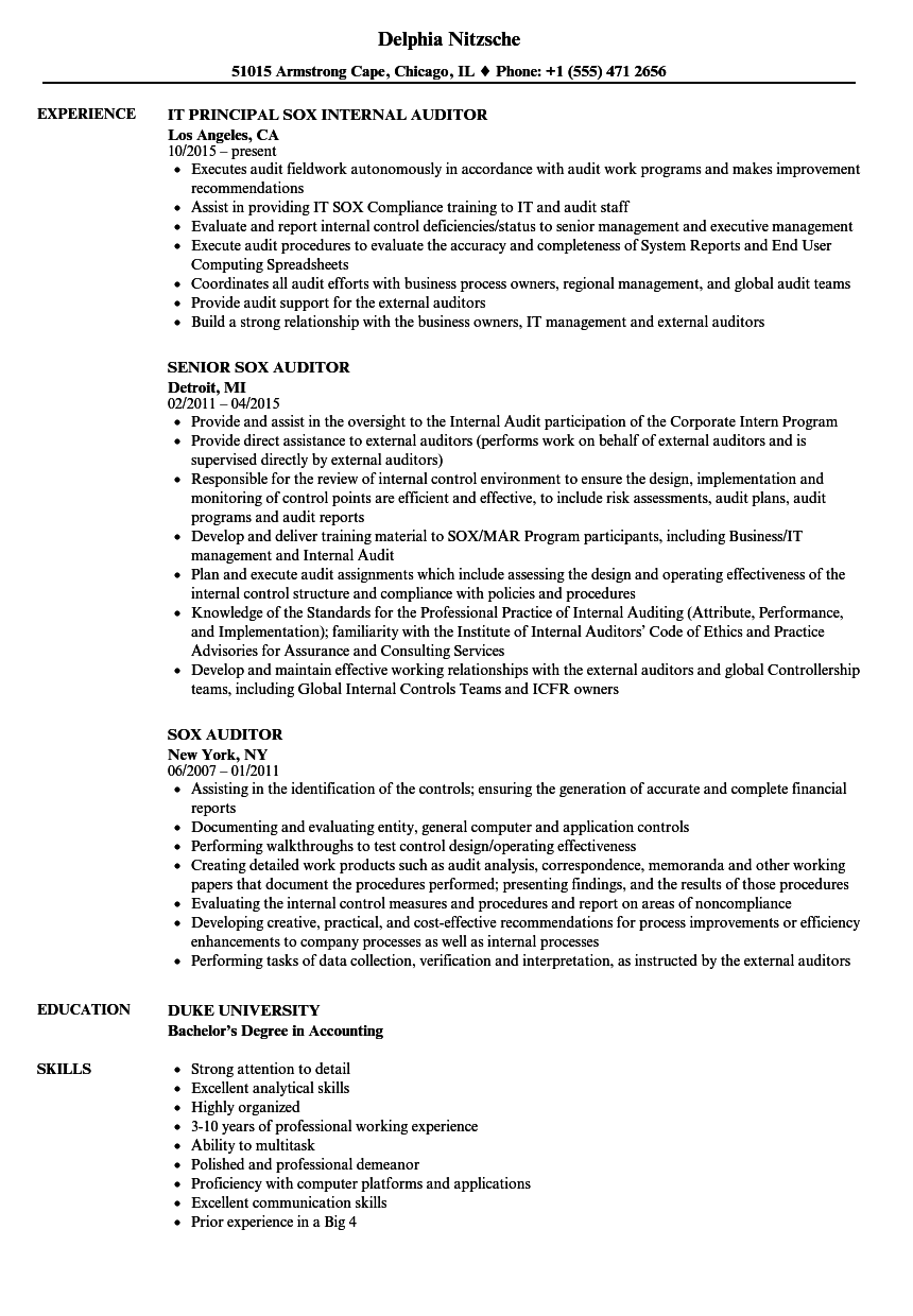 Sox Auditor Resume Samples | Velvet Jobs