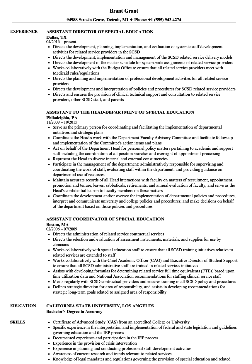 resume example special education