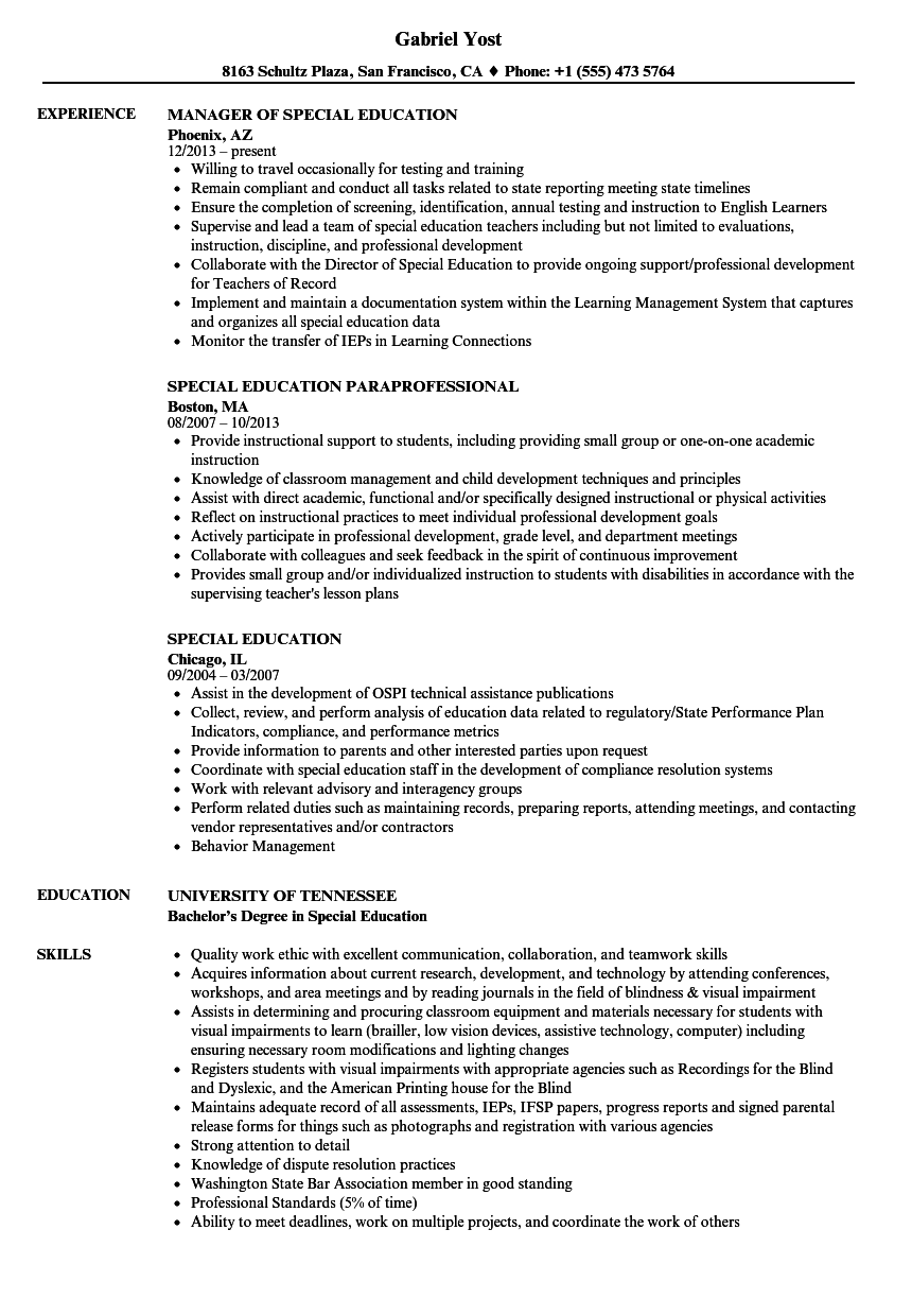 Download Special Education Resume Sample As Image File