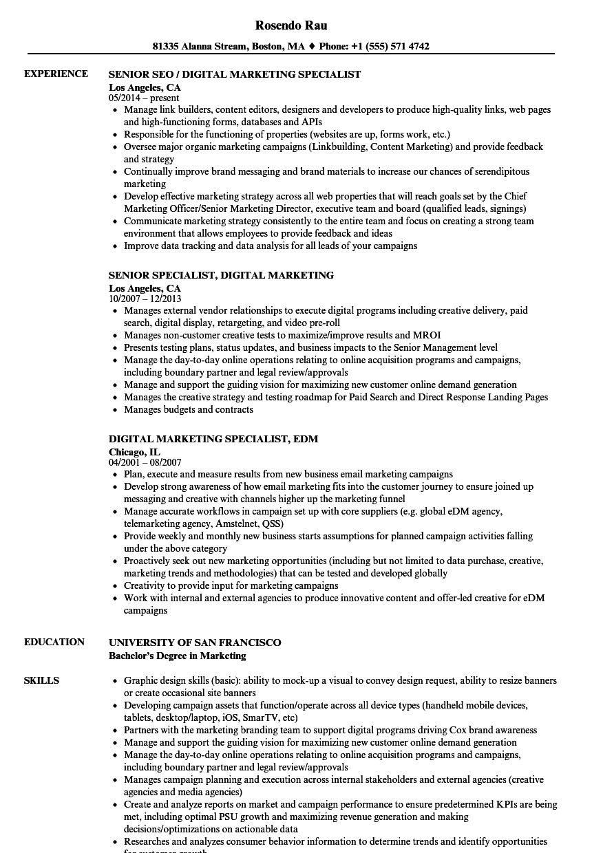 Specialist Digital Marketing Resume Samples | Velvet Jobs
