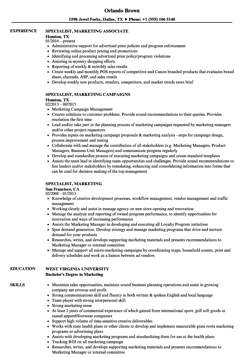 specialist  marketing resume samples