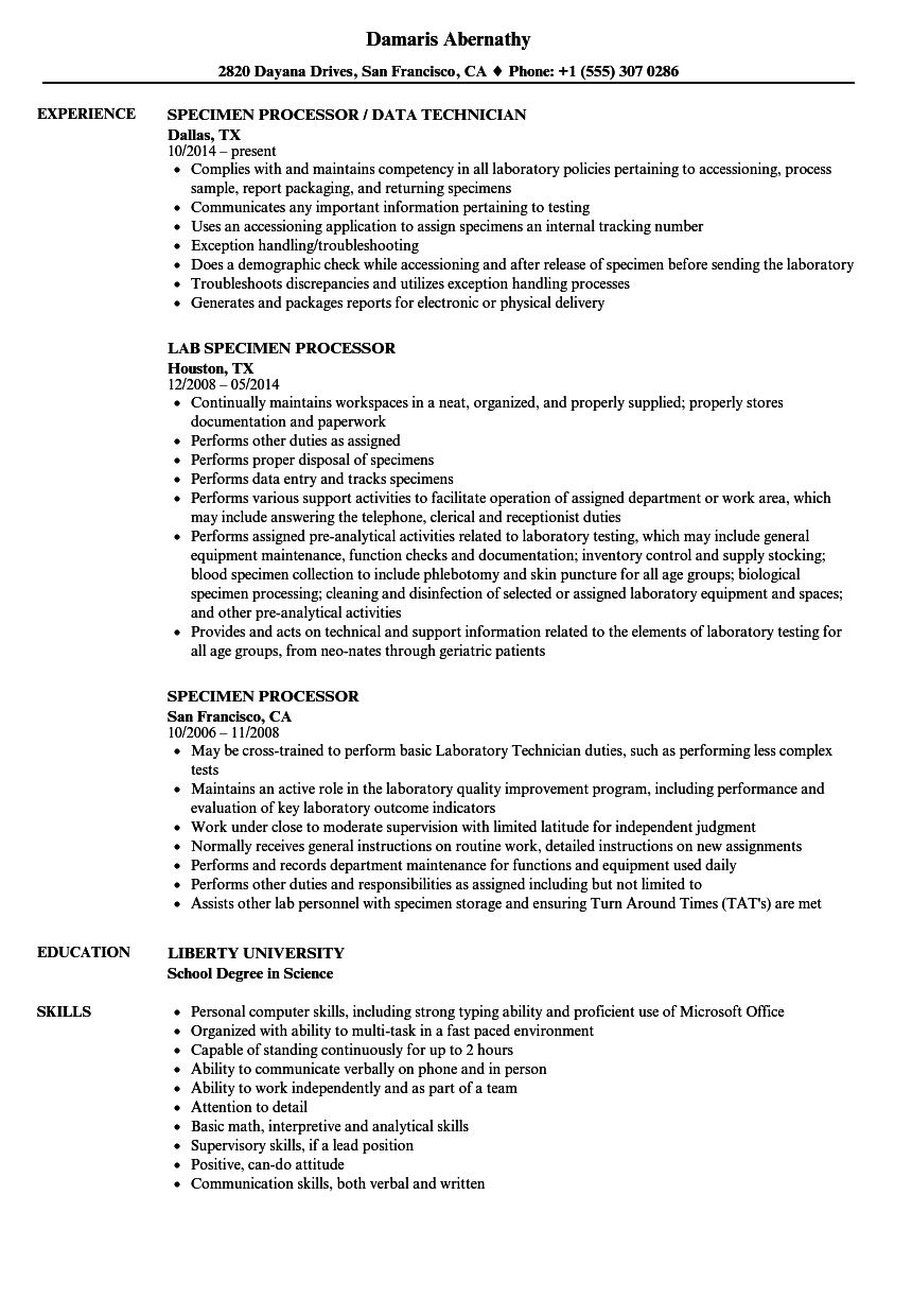 download specimen processor resume sample as image file - Loan Processor Resume Sample