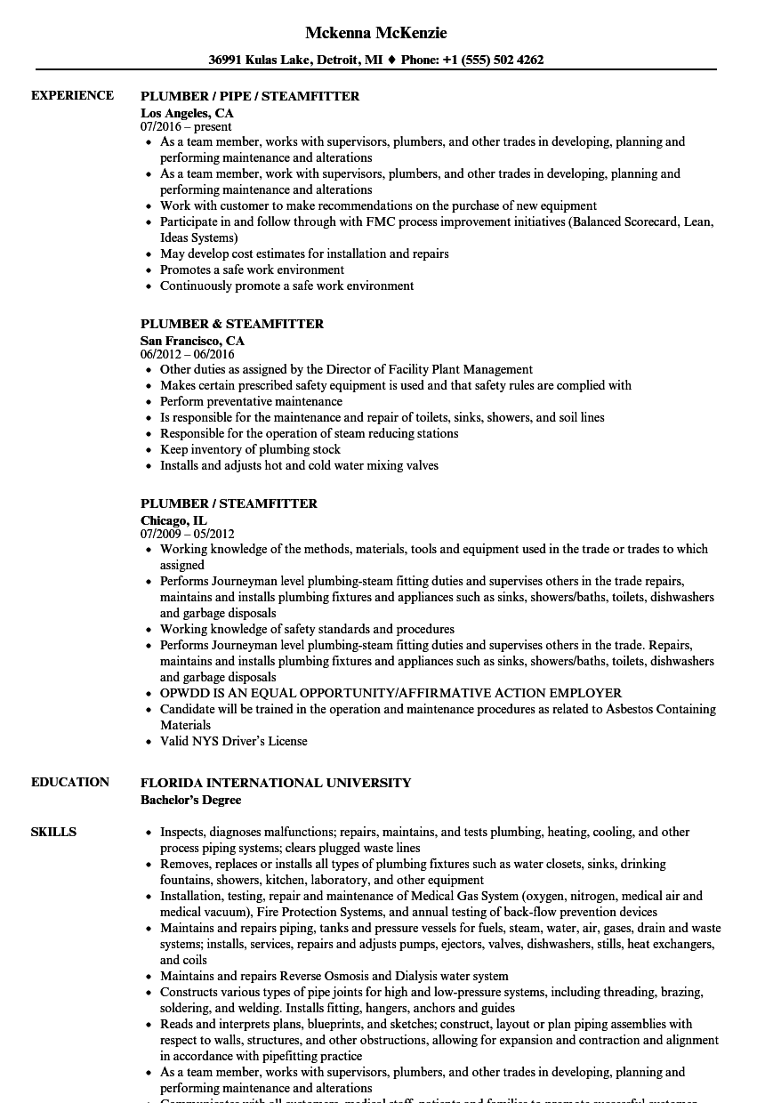 Download Steamfitter Resume Sample As Image File
