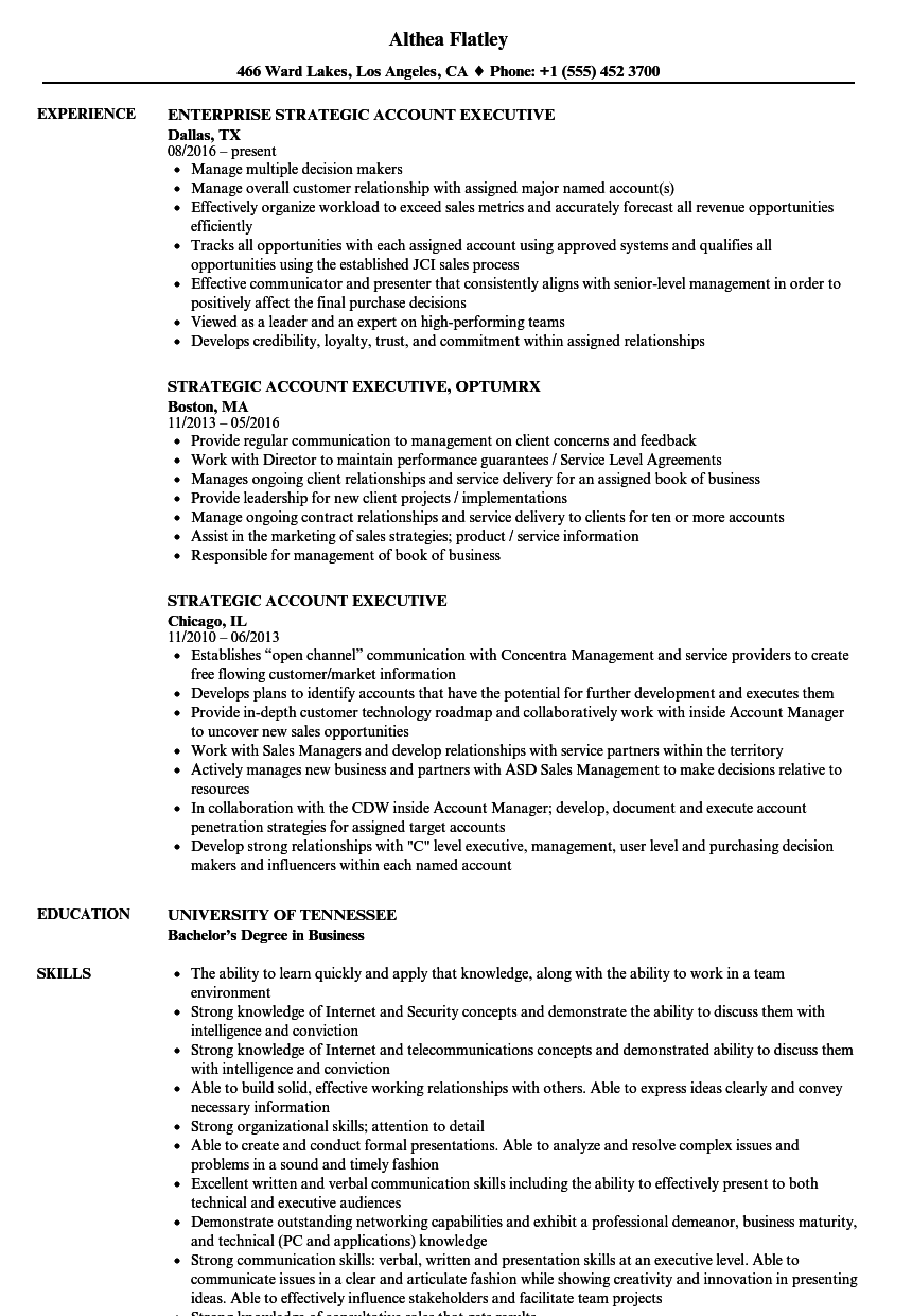 Strategic Account Executive Resume Samples Velvet Jobs